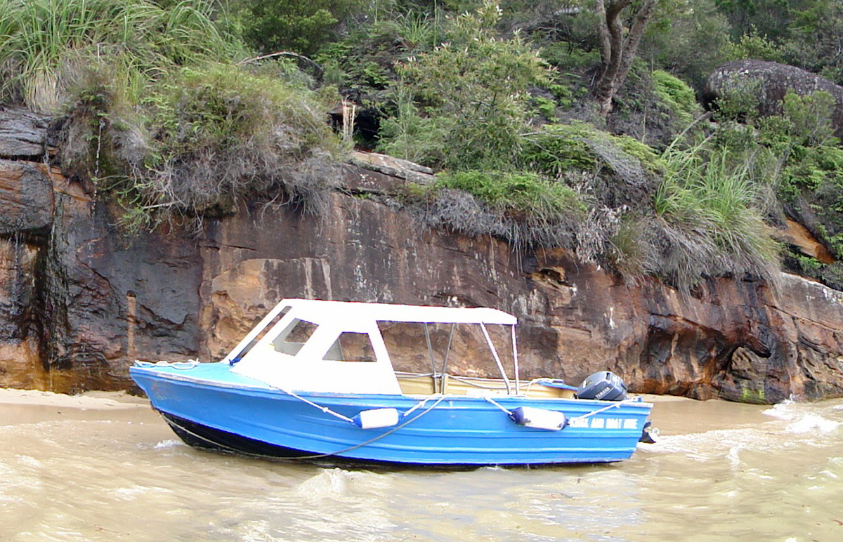 Ku-ring-gai Chase NP and Palm Beach Private Tour
