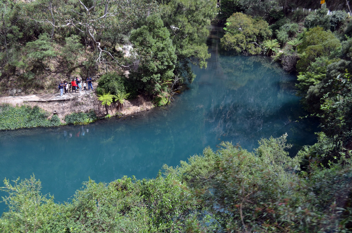 Blue Mountains and Jenolan Caves Private Tour