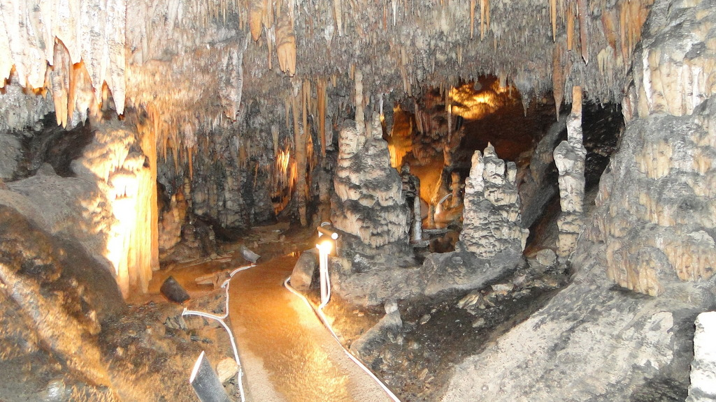 Wombeyan Caves Private Tour